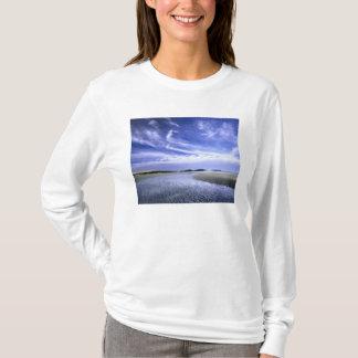 POPHAM BEACH STATE PARK, MAINE. USA. Cirrus T-Shirt