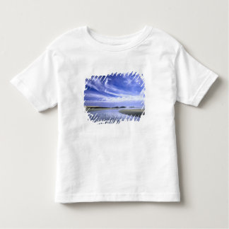 POPHAM BEACH STATE PARK, MAINE. USA. Cirrus Toddler T-shirt