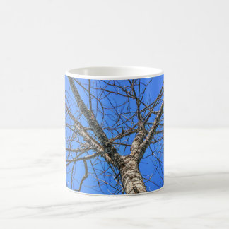 Poplar Tree Crown Coffee Mug