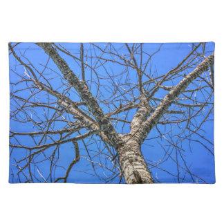 Poplar Tree Crown Placemat