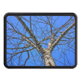 Poplar Tree Crown Trailer Hitch Cover