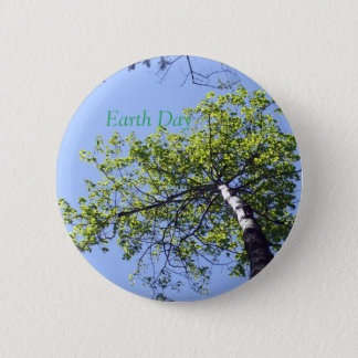 Poplar  Tree Top and Blue Sky Button