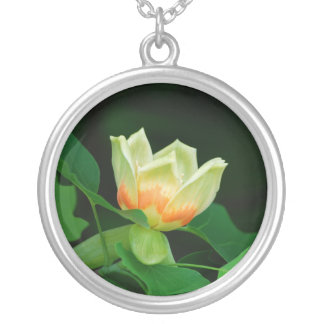 Poplar Tree Tulip necklace