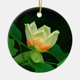 Poplar Tree Tulip ornament