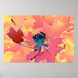 Poplar Tree Tulip poster