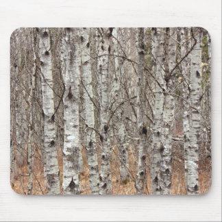 Poplar Woodlot Mouse Pad