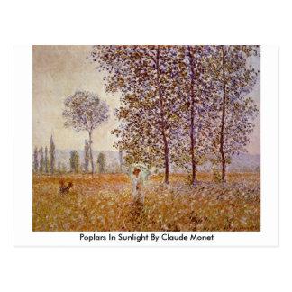 Poplars In Sunlight By Claude Monet Postcard