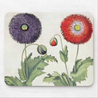 Poppies: 1.Papaver flore multiplici incarnato; 2.P Mouse Pad