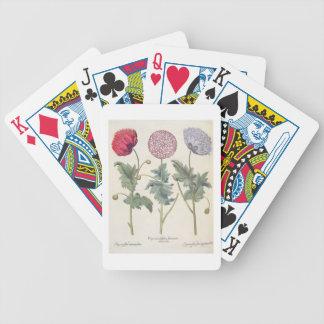Poppies: 1.Papaver multiplex albumoris rubicundis; Bicycle Playing Cards