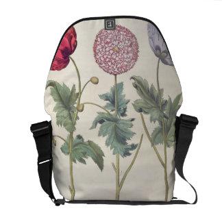 Poppies: 1.Papaver multiplex albumoris rubicundis; Messenger Bags
