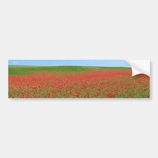 Poppies alive! car bumper sticker
