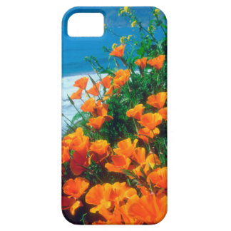 Poppies along the Pacific Coast near Big Sur iPhone SE/5/5s Case