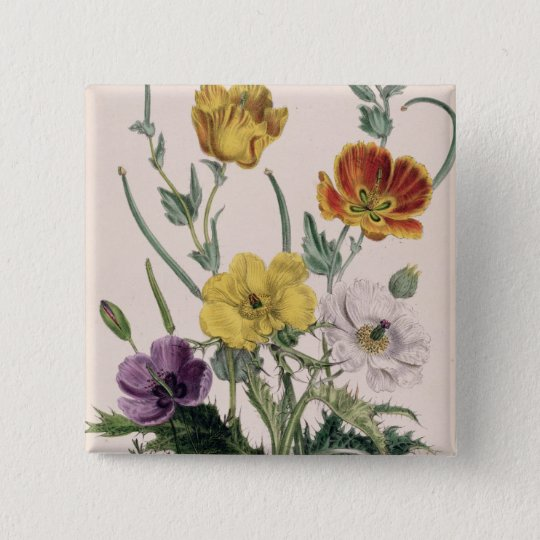 Poppies and Anemones Button