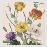 Poppies and Anemones Stickers