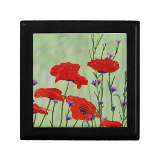 Poppies and Bachelor Buttons Gift Box