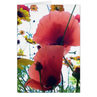poppies and coreopsis card