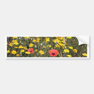 Poppies and daisies, El Camino Bumper Sticker