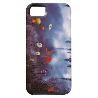 Poppies and Reflections iPhone 5s case