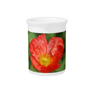 Poppies and their meaning pitchers