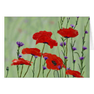 Poppies Any Occasion Blank Card