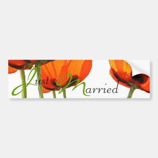 Poppies ! bumper sticker