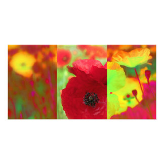 Poppies field photo card
