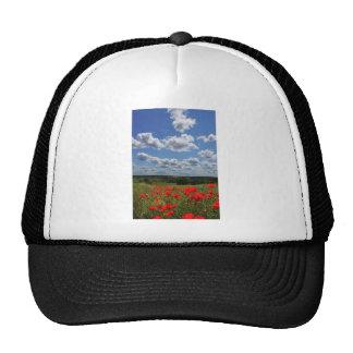 Poppies Hats