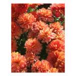 Poppies I Letterhead Design