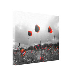 Poppies in Black,White and Red Canvas Print