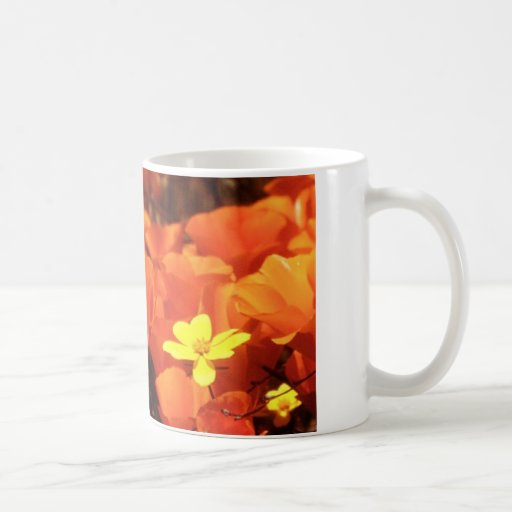 Poppies in bloom classic white coffee mug