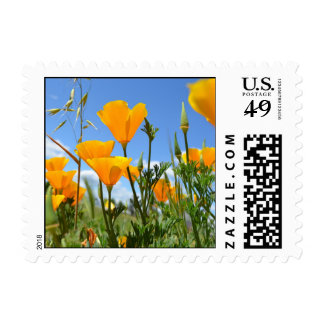 Poppies in Spring Stamp