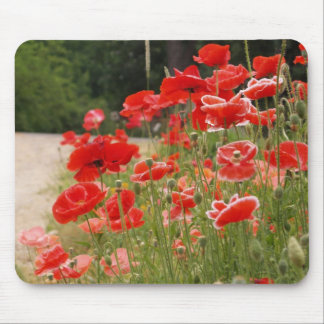 poppies mousepad