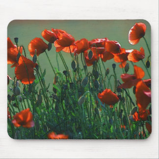Poppies no. 3 | Mousepad