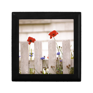 Poppies on a Fence - Maine Landscapes Jewelry Box