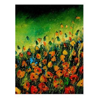 poppies orange 459080 post cards