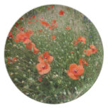 Poppies Plates
