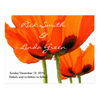 Poppies ! Save the Date Postcard
