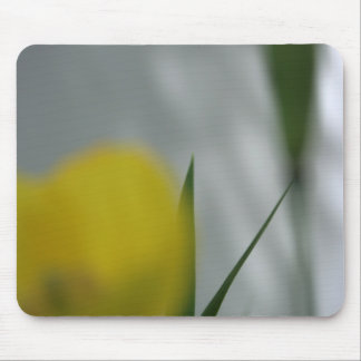 Poppies & shade (4) mouse pad