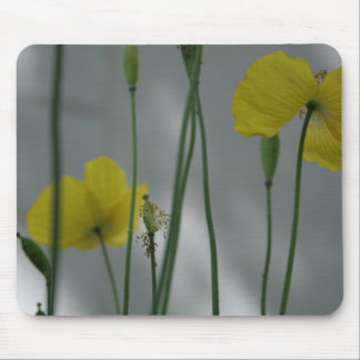 Poppies & shade (9) mouse pad