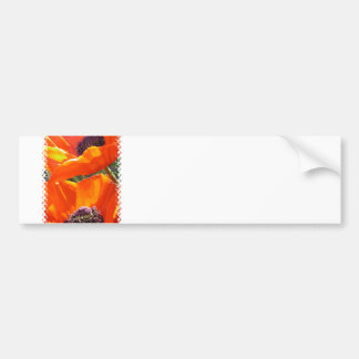 Popping Poppies  Bumper Stickers