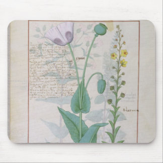Poppy and Figwort Mouse Pad