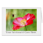 Poppy & Bee Pink on Green Greeting Card