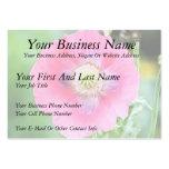 Poppy Bloom - Papaver Somniferum Business Cards