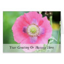 Poppy Bloom - Papaver Somniferum card