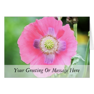 Poppy Bloom - Papaver Somniferum Card
