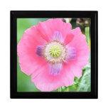 Poppy Bloom - Papaver Somniferum Jewelry Box