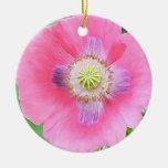 Poppy Bloom - Papaver Somniferum Christmas Ornament