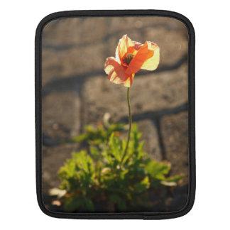 Poppy blooming iPad sleeve