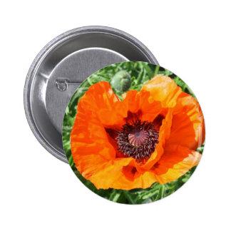Poppy Button