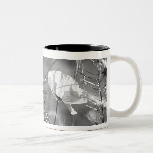 Poppy collection coffee mug